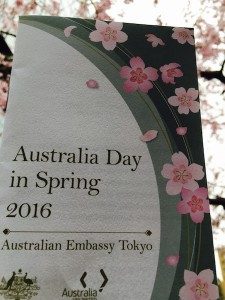 大使館お花見